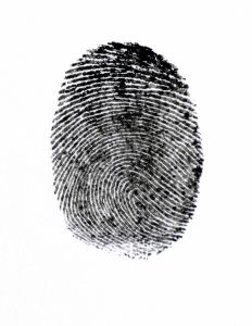 An Author's Fingerprints